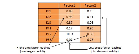 Exploratory factor analysis for convergent and discriminant validity