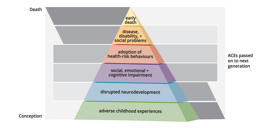 ACE Intergenerational Transmission Pyramid from birth to death