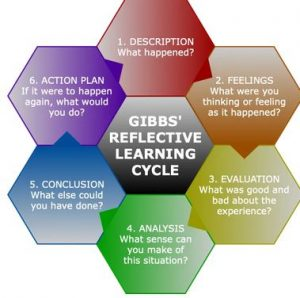 Gibb's reflective cycle of decription, feelings, evauation, analysis, action plan, cocnlusion