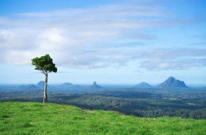 Scenery of One tree Hill Australia