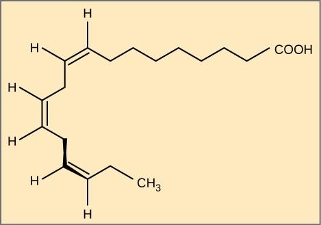 Fatty acid omega-3