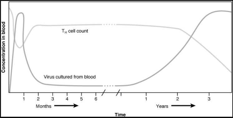 Graph on HIV progression