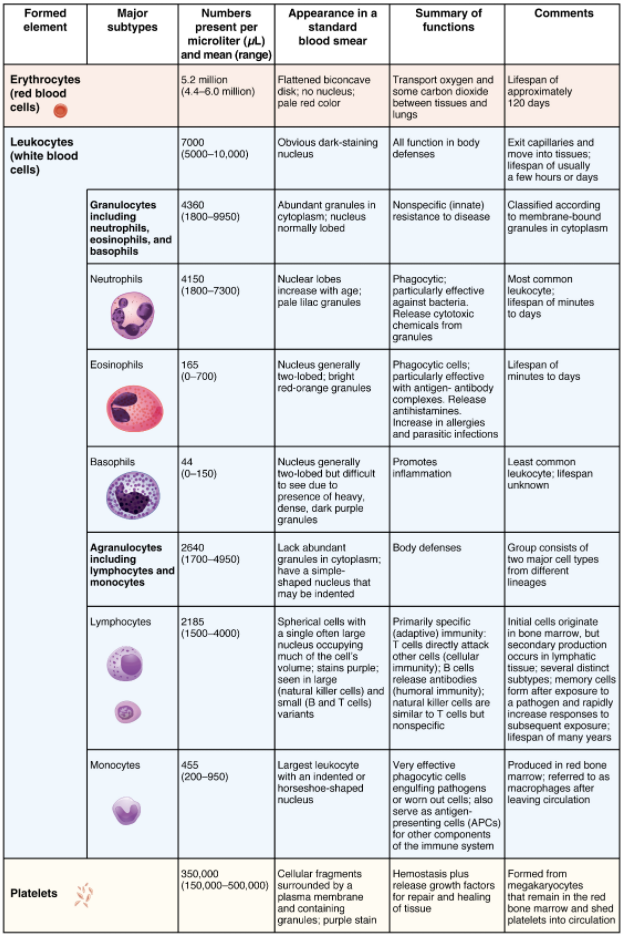 Table that summarises formed elements in blood