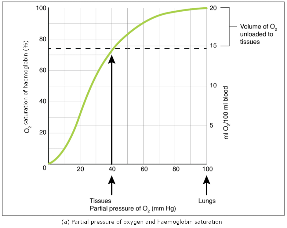 Graph pf partil pressure of oxygen and gaemoglobin saturation