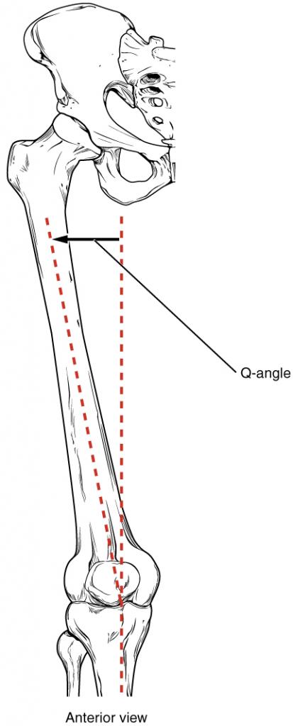 The Q-angle