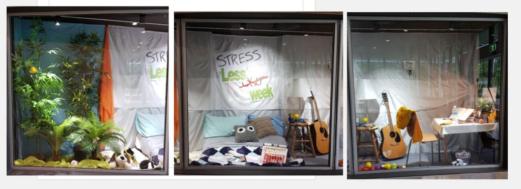 Ipswich Library window display for Stress Less Week 2020